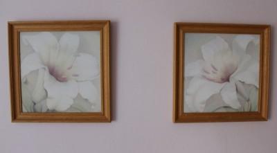 Obrazy lilie